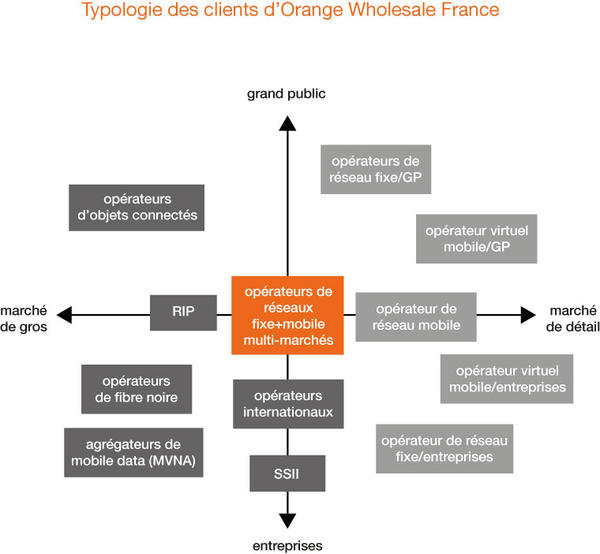 Tyoplogie des clients d'Orange Wholesale France